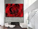 Red Rose Flower Giclee Canvas Giclee Art Print