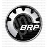BRP Ski-Doo See-Do Snowmobiles Roadsters Sticker